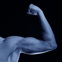 Arm & armbåge